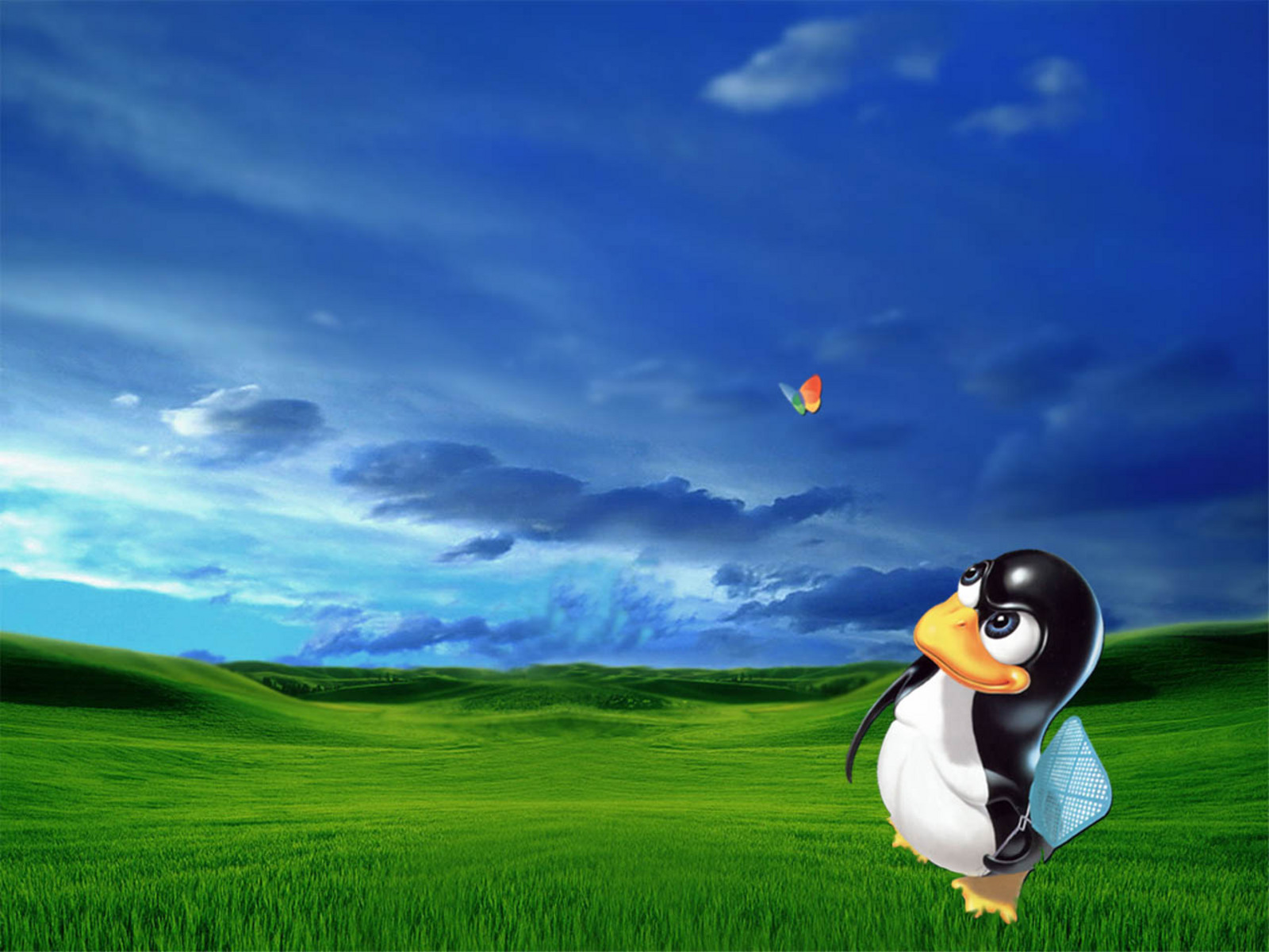 Linux Hunting Windows Wallpapers HD Wallpapers 1600x1200