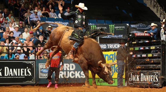 bull riding wallpaper wallpapersafari