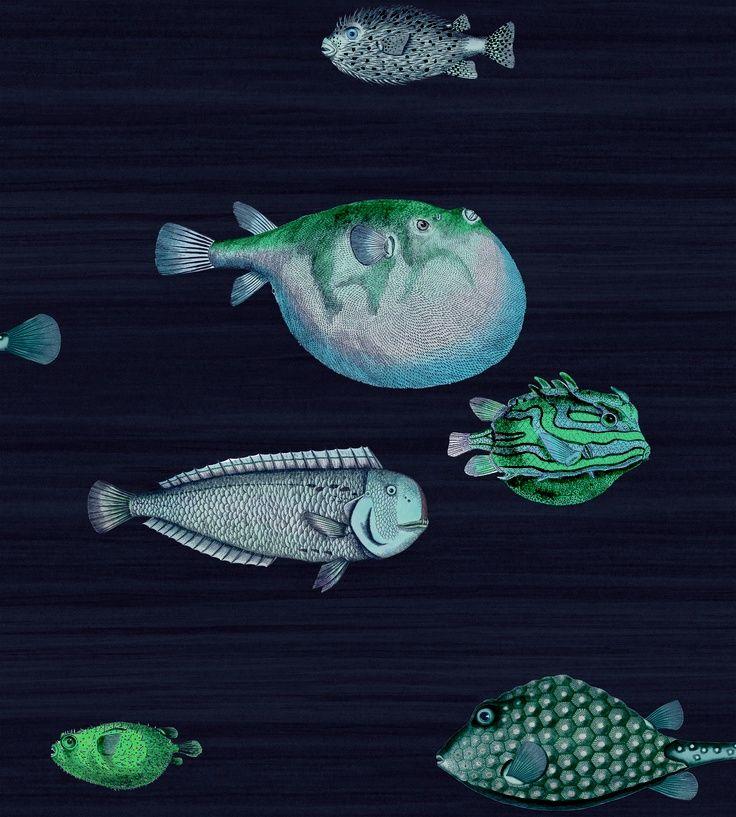 Fornasetti wallpaper via Colesons House   Wallpaper Pinterest 736x817