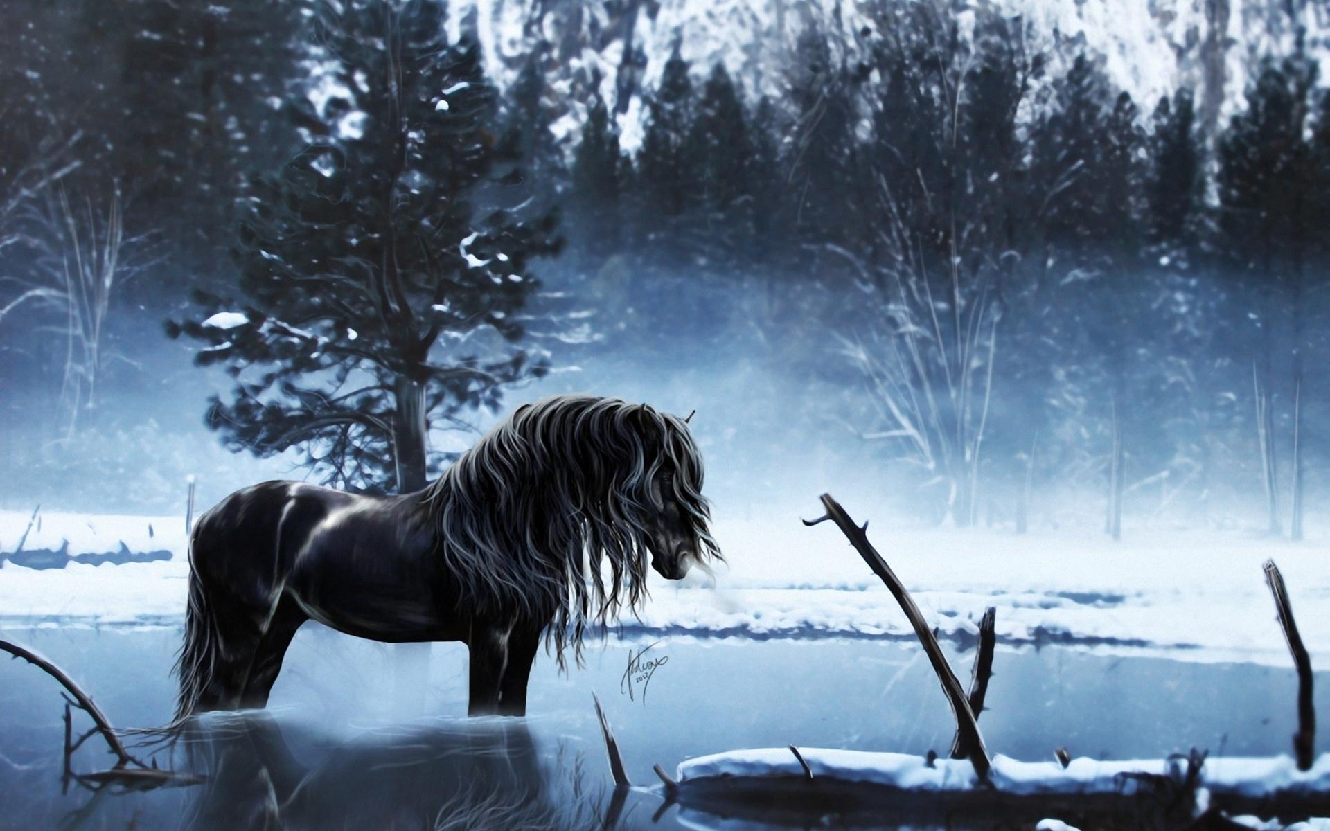 Horses fantasy art winter wallpaper 1920x1200 37159 WallpaperUP 1920x1200