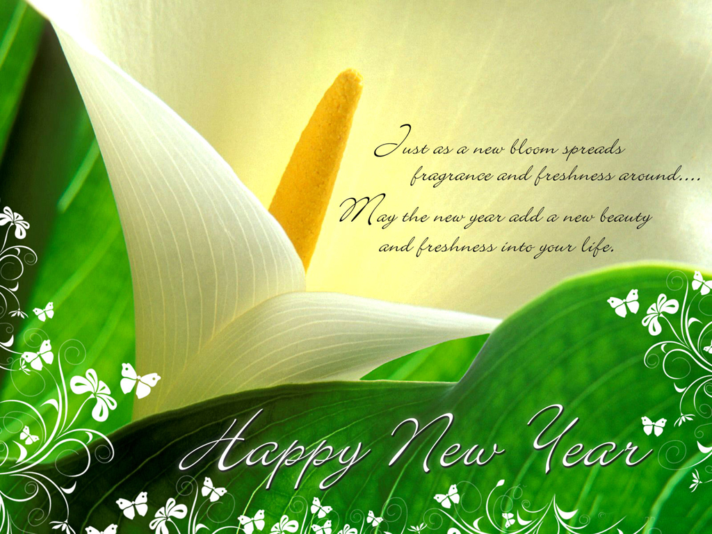 Beautiful Happy New Year 2010 Wallpaper Wallpapers 1024x768