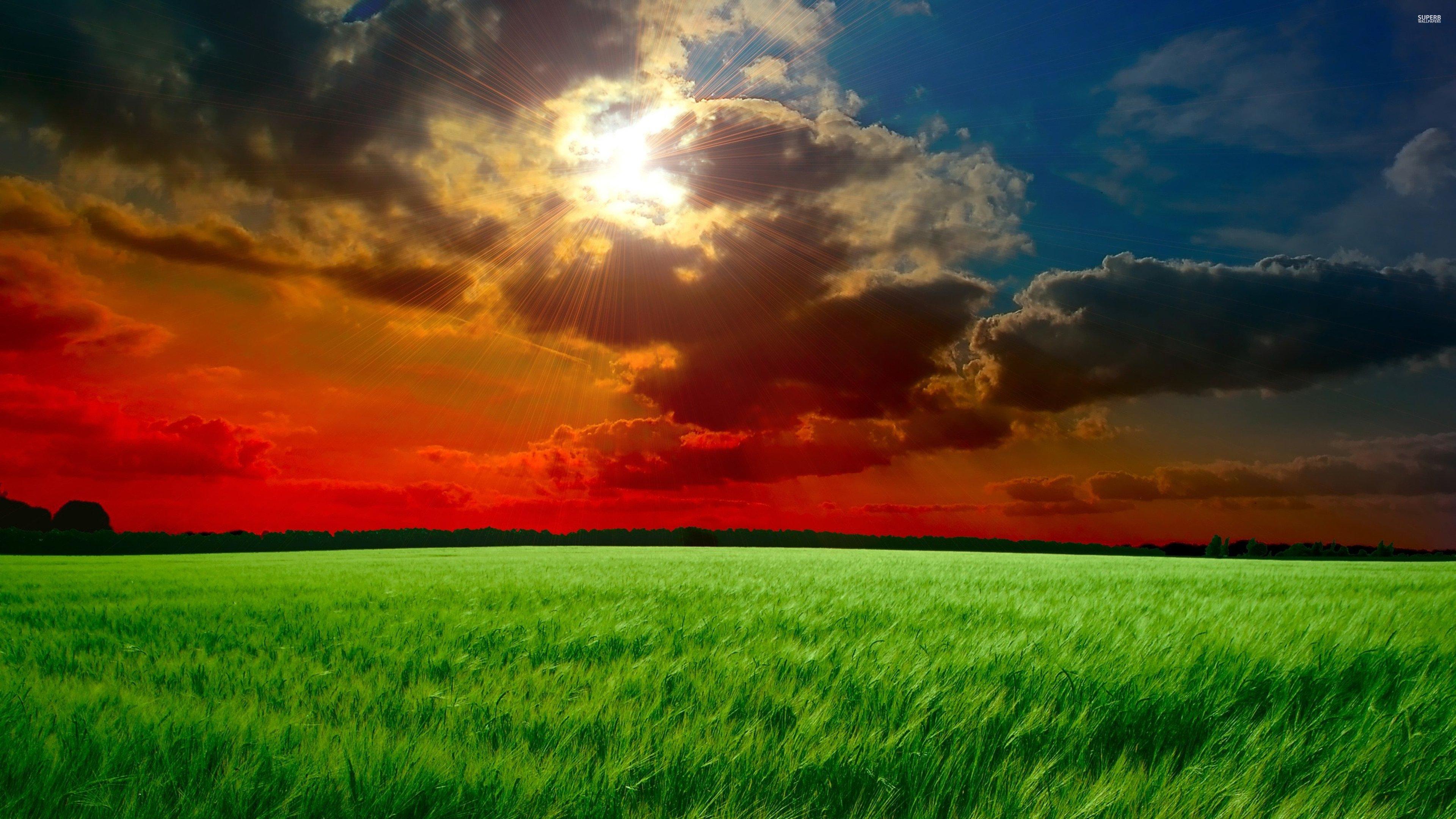 Green field 17854 3840x2160 wallpaper 3840x2160 317485 3840x2160