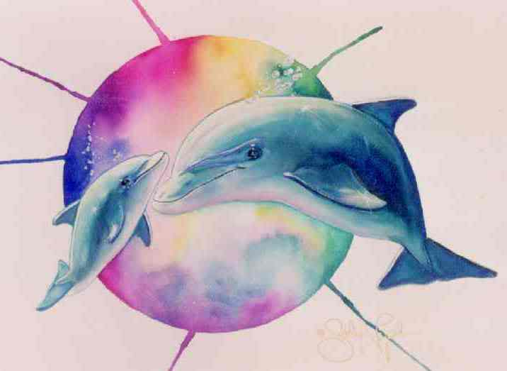 39 Colorful Dolphin Wallpaper On Wallpapersafari