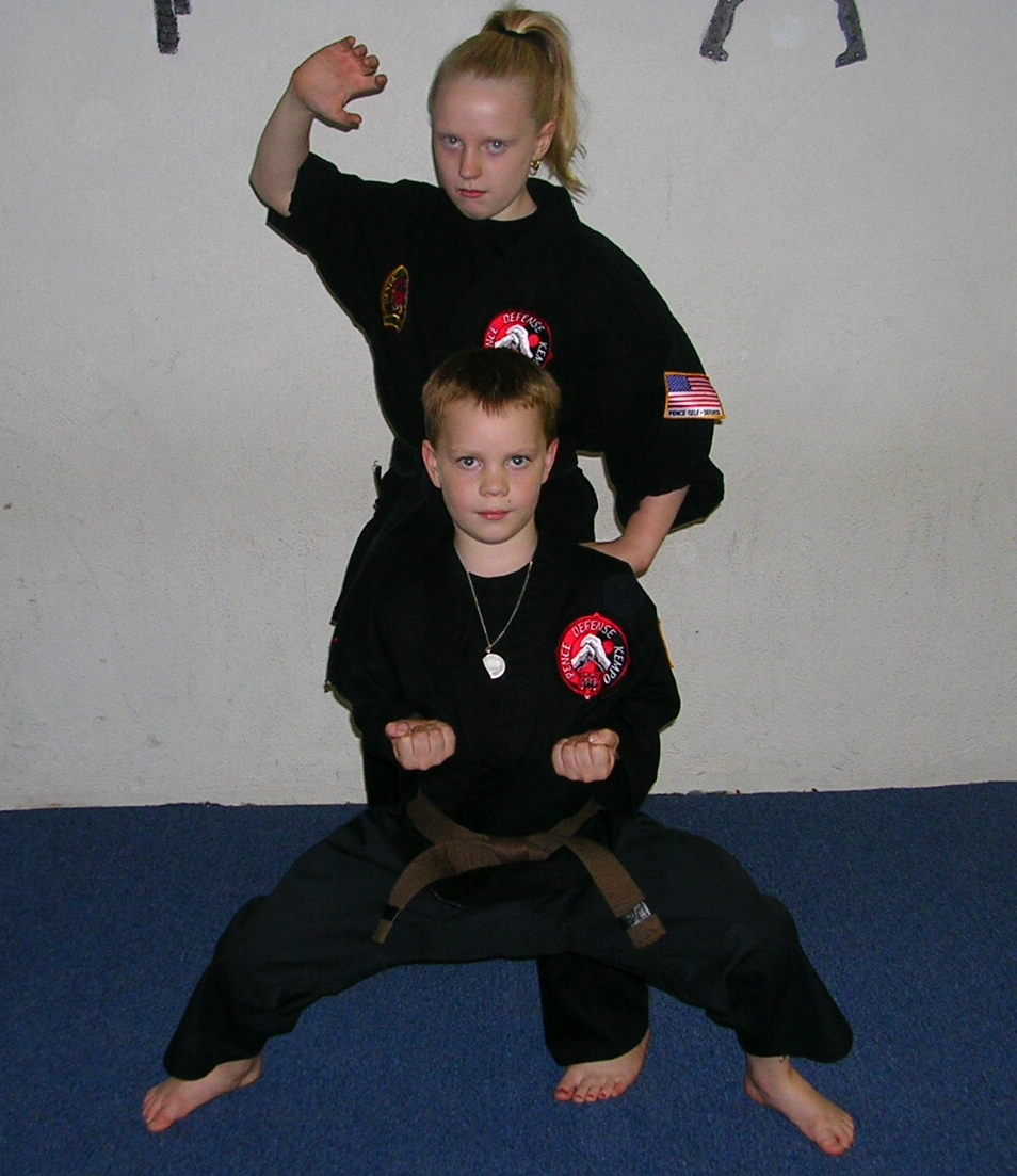 Kenpo Karate Wallpaper Shaolin Kempo American Pictures 954x1103
