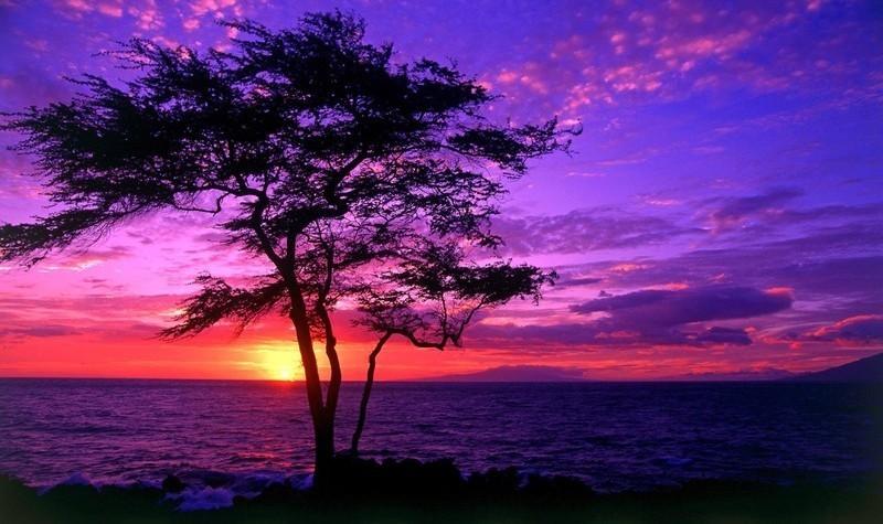 Beautiful Nature images Beautiful Sunset wallpaper photos 21887669 800x475