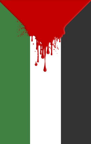 Palestine Flag phone wallpaper by iroamer 381x600