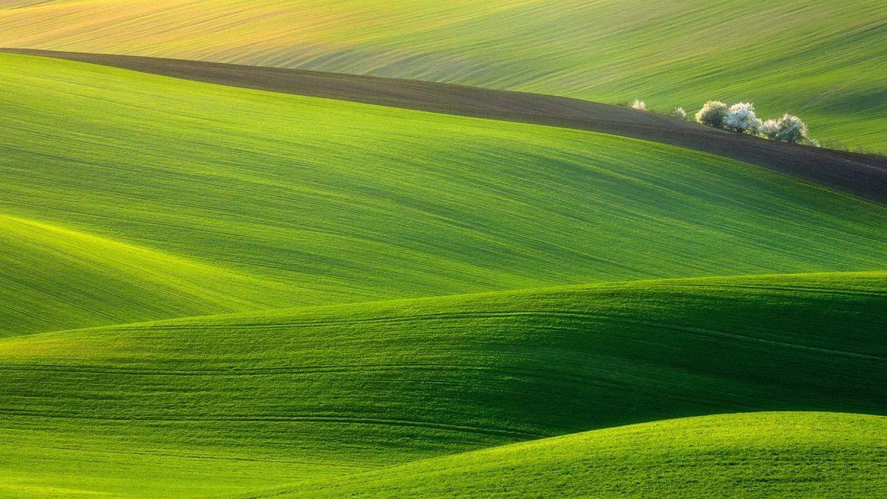 Download Nature 1280x720 HD Wallpaper Wid 18234 Wallpaper 1280x720