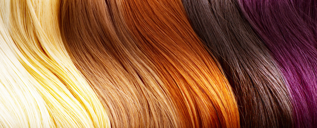 Bargain Hair Color Professional Hair Care and Hair Color Products 1024x416