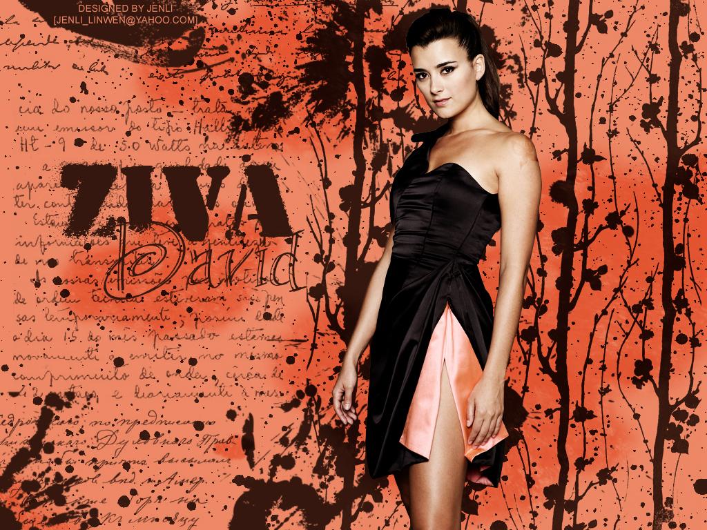Ziva David   NCIS Wallpaper 5005687 1024x768