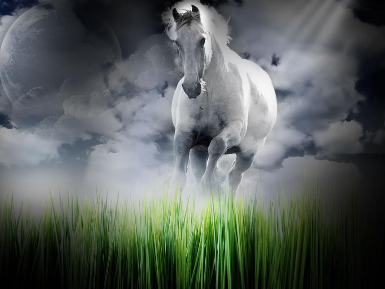running horse animal wallpaper download 1280x960