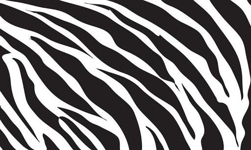View Bigger Zebra Print HD Live Wallpaper For Android Screenshot 512x307