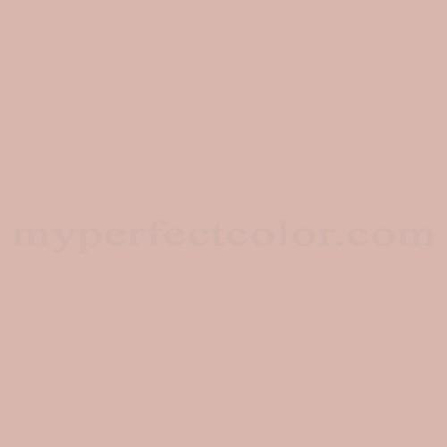 Color match of Dunn Edwards DE6087 Muddy Rose HD Wallpaper 500x500