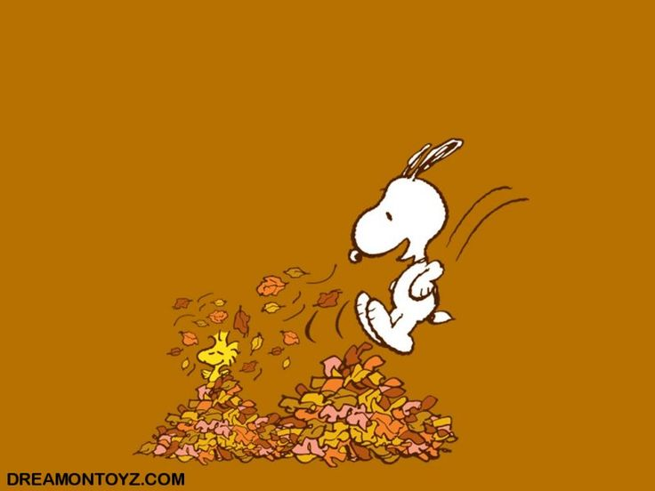 Graphics Pics Gifs Photographs Snoopy Autumn Fall wallpaper 736x552