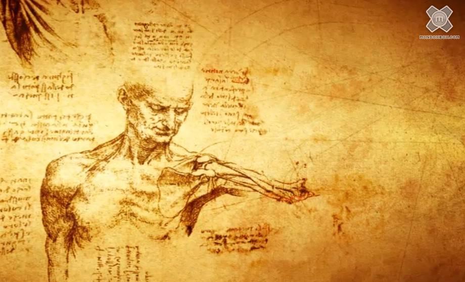 Medical Doctor Wallpaper: Medical Doctor Wallpaper