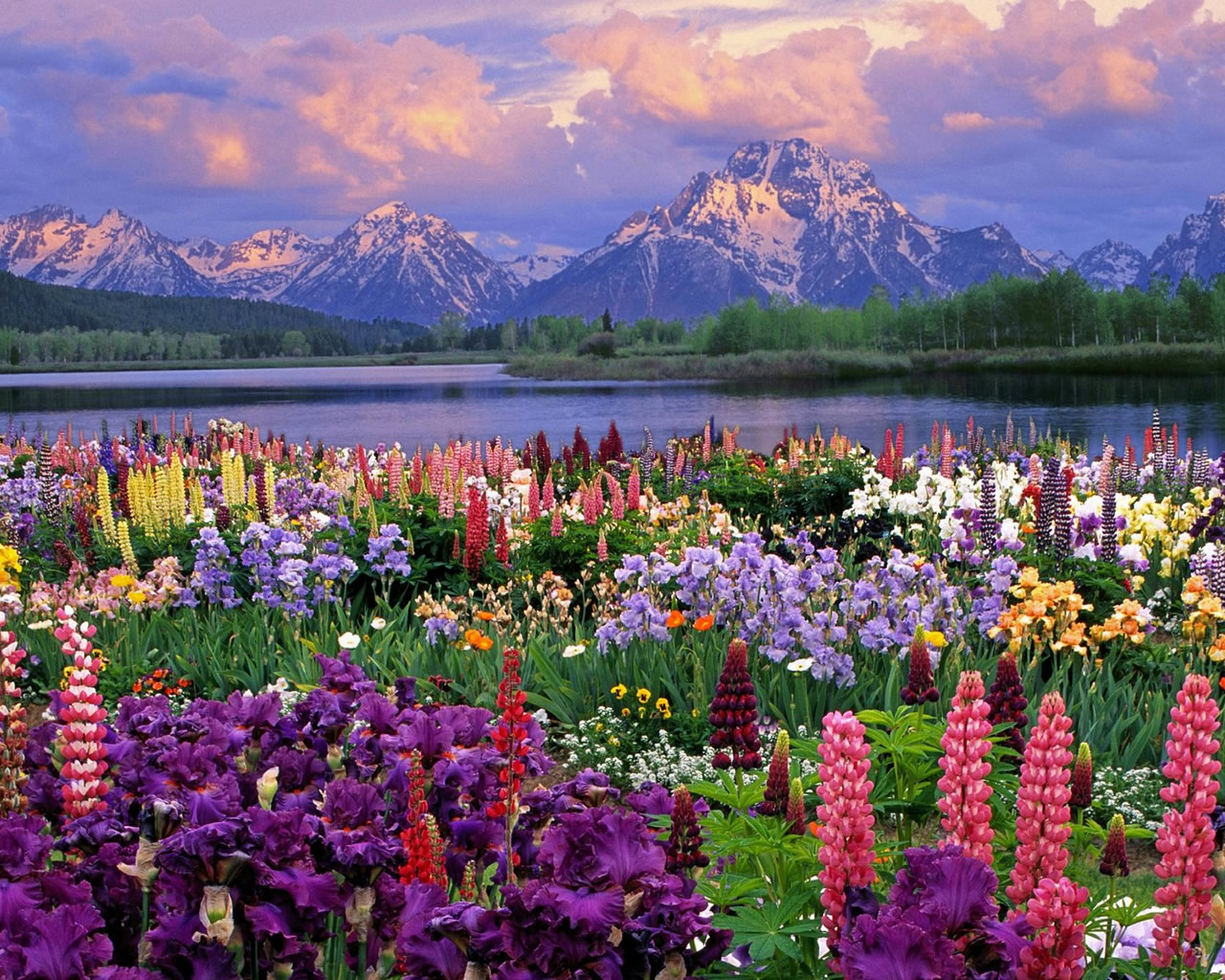 Spring Mountain Landscape Hd Desktop Wallpaper 1280x1024