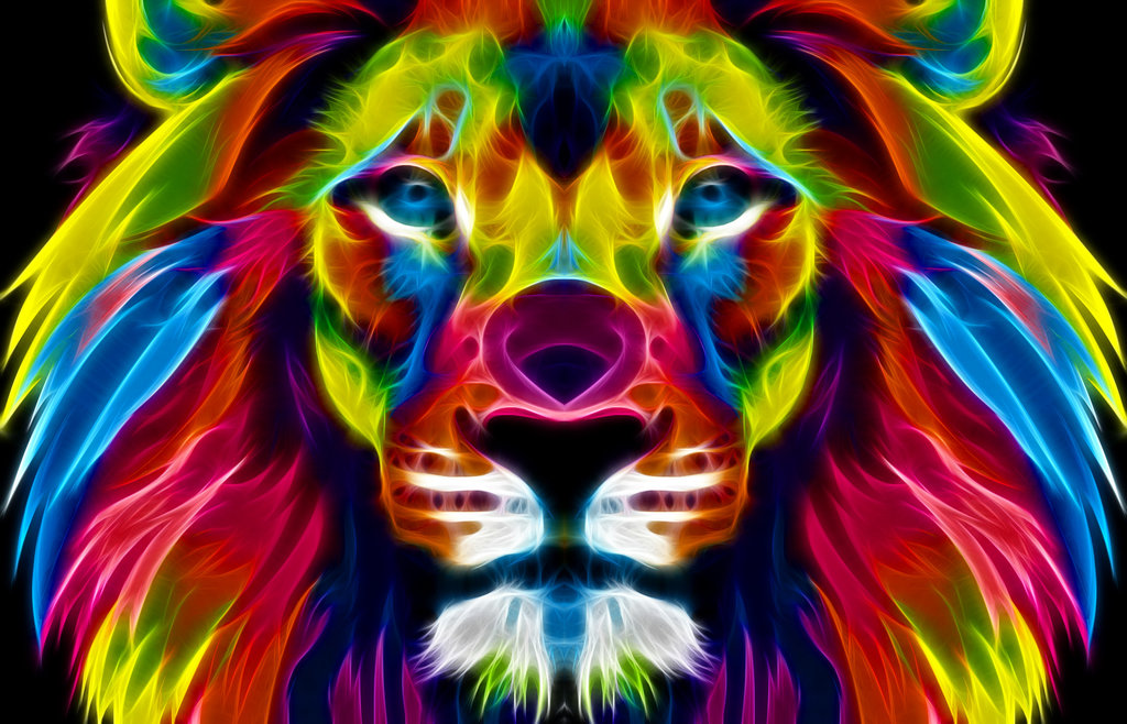 Colorful Lion Wallpaper - WallpaperSafari