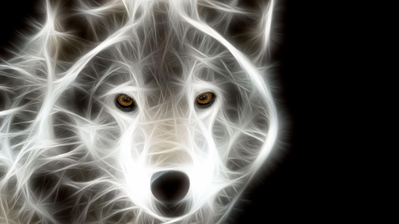 NEON animals live wallpaper   screenshot 1280x720