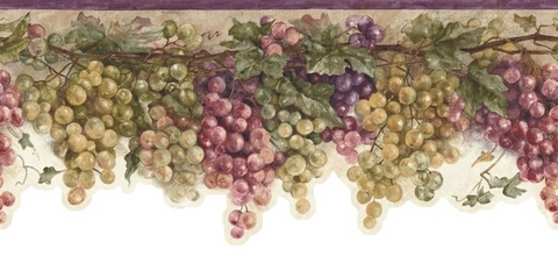 tags bc1581073 border color border designs fruit border grape border 1440x660