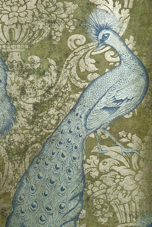 Peacock Tail Foil Animal Novelty Wallpaper   wallpaper metallic gold 534x797