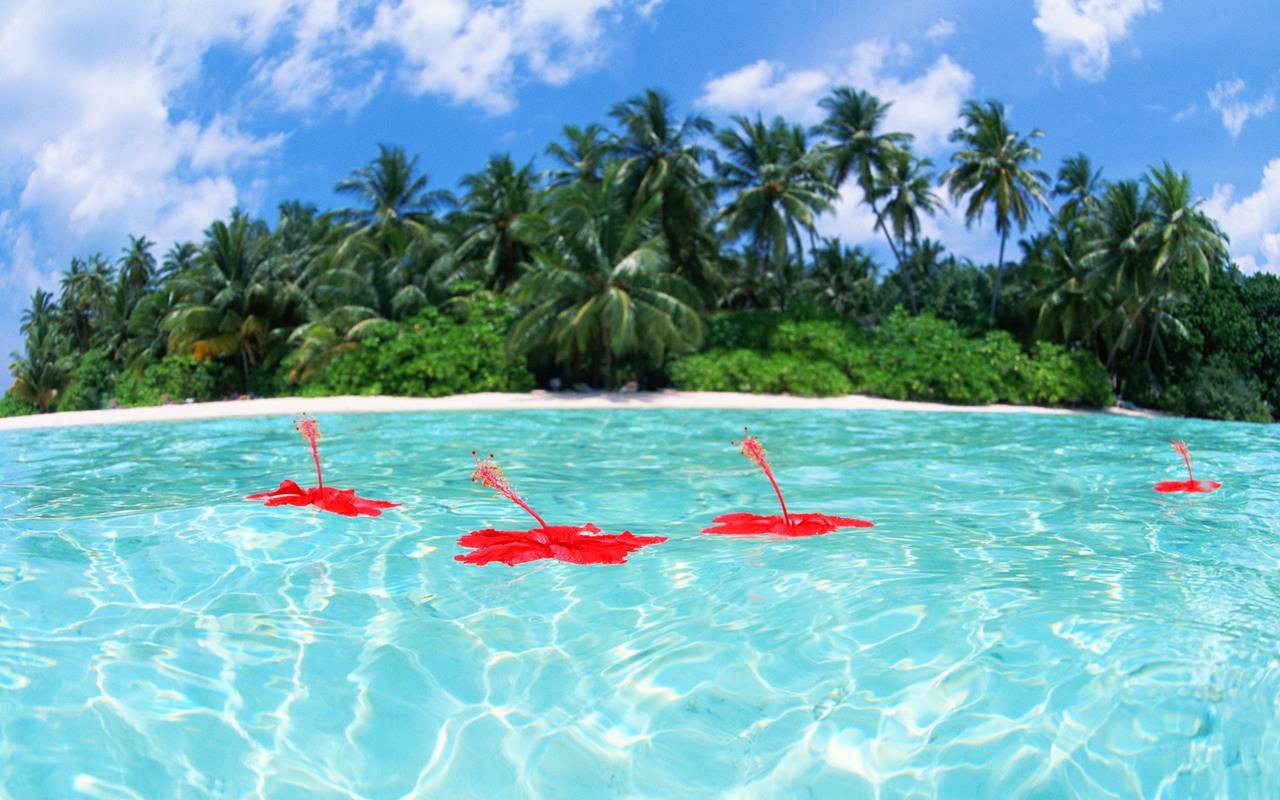 wallpaper - maldives travel - maldives tourism - maldives island ...