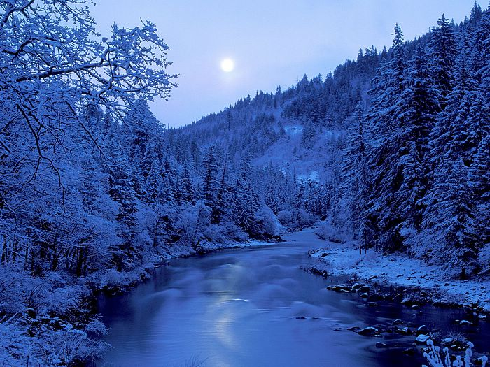 Gorgeous Snow Scene wallpaper   perfect winter paradise scene 700x525