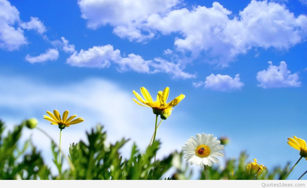 happy first day of spring clip art 1024x627