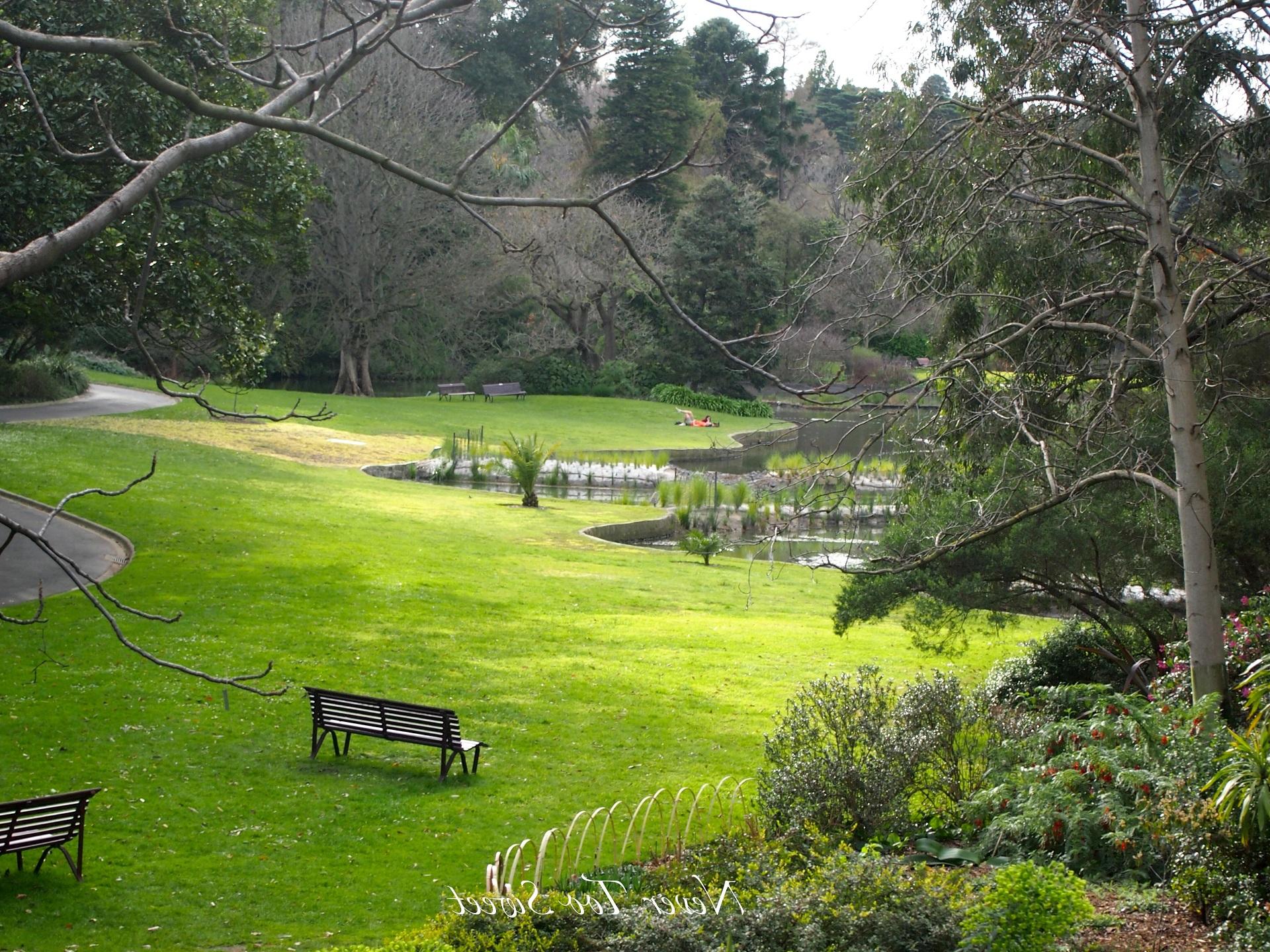 australia nature 1920x1440 hd - photo #31