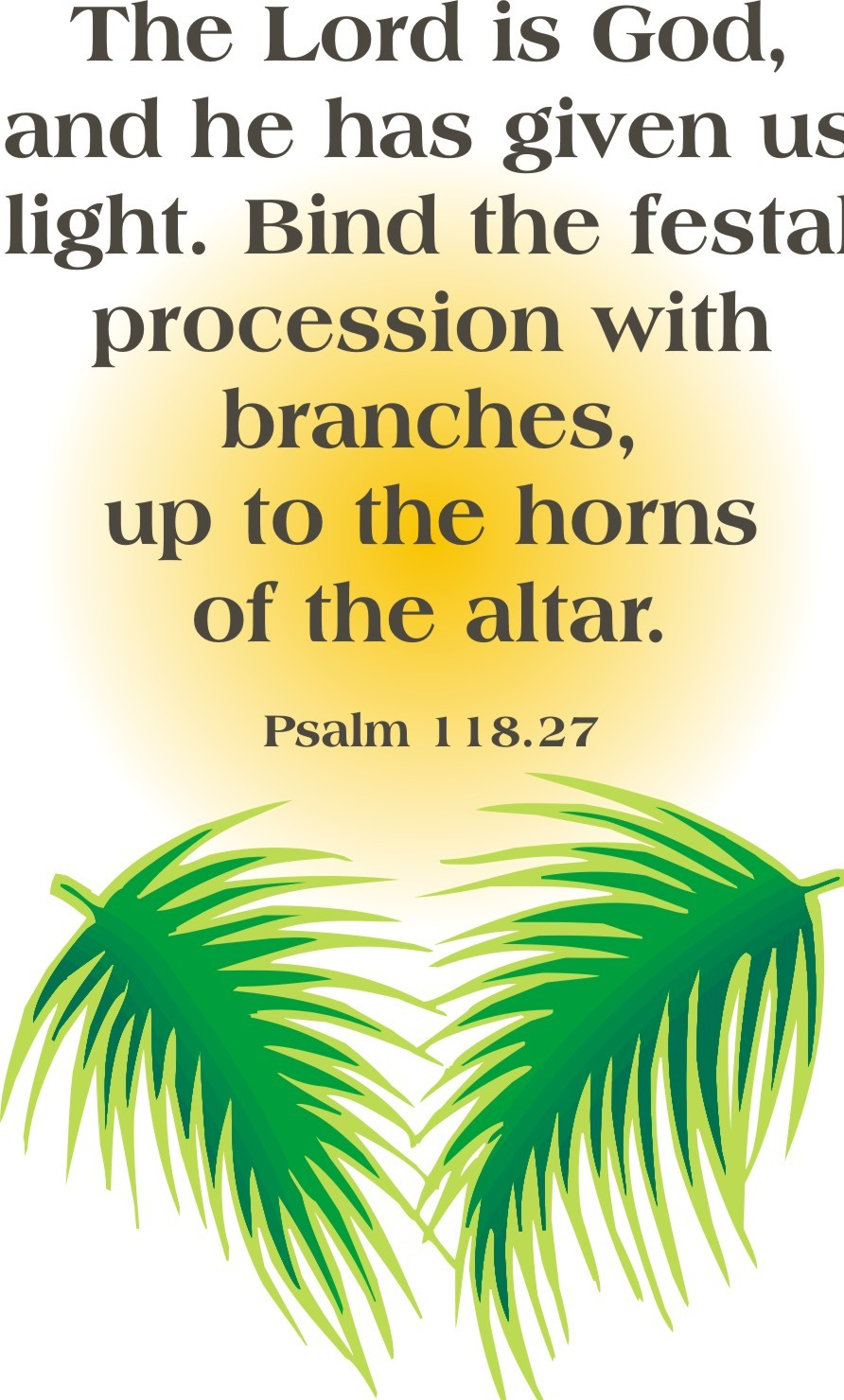 Latest Palm Sunday Wallpaper Happy Quotes 892x1480
