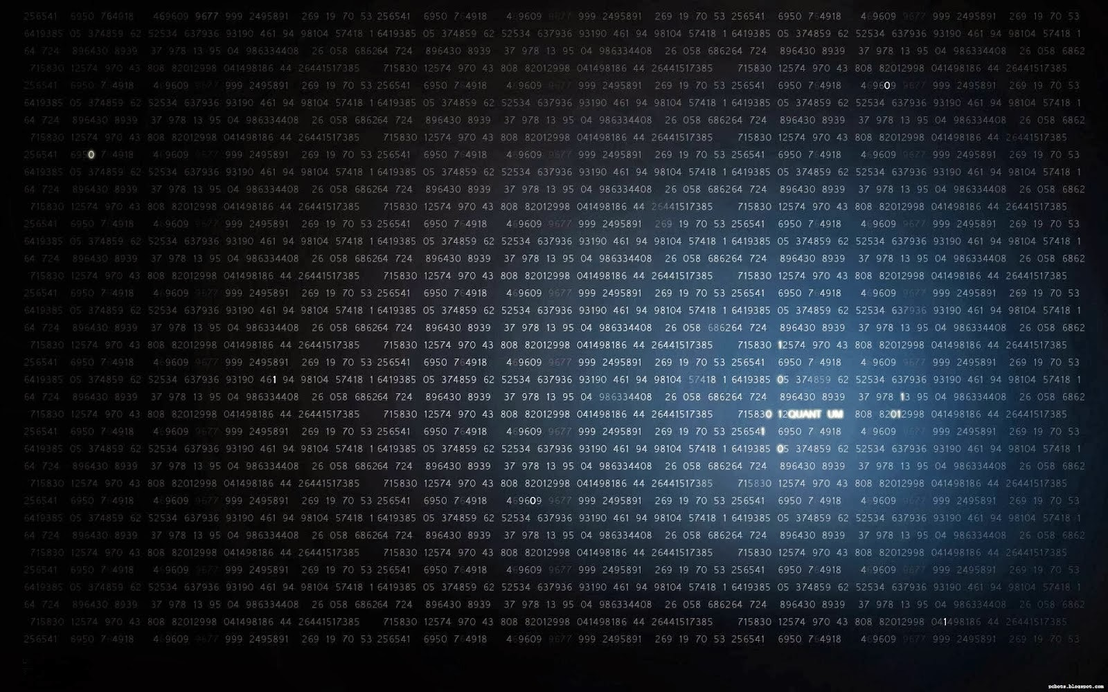 Top 10 HD Wallpapers for Hackers Hacks and Glitches Portal 1600x1000