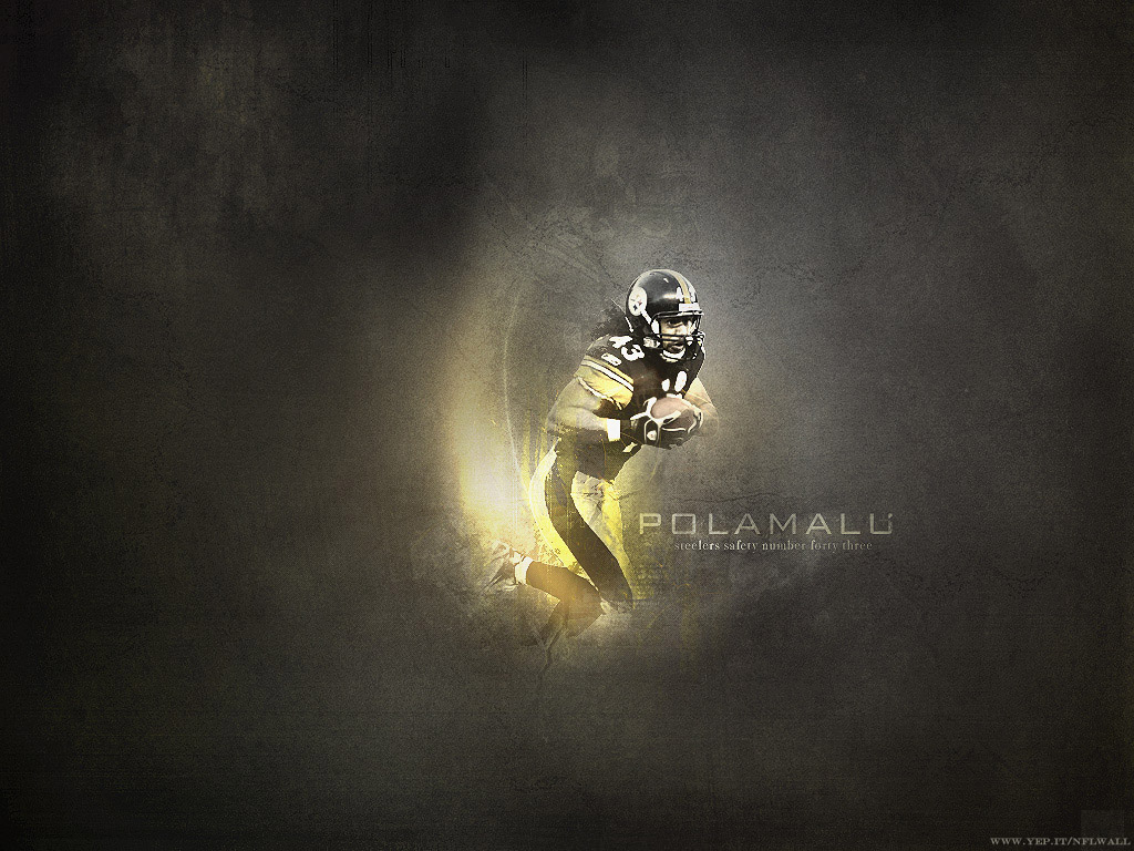 troy polamalu wallpaper pittsburgh steelers wallpaper 1024x768jpeg 1024x768