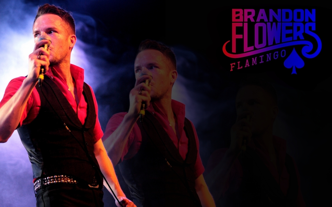 Brandon Flowers images Flamingo wallpaper HD wallpaper and 1280x800