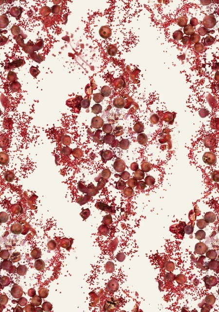 Fallen Fruit Pomegranate Wallpaper Pattern 2 Neutral Background 450x640