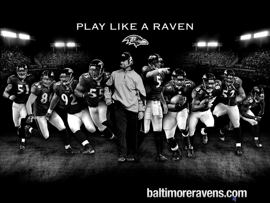 de Baltimore Ravens Fondos de pantalla de Baltimore Ravens 1024x768