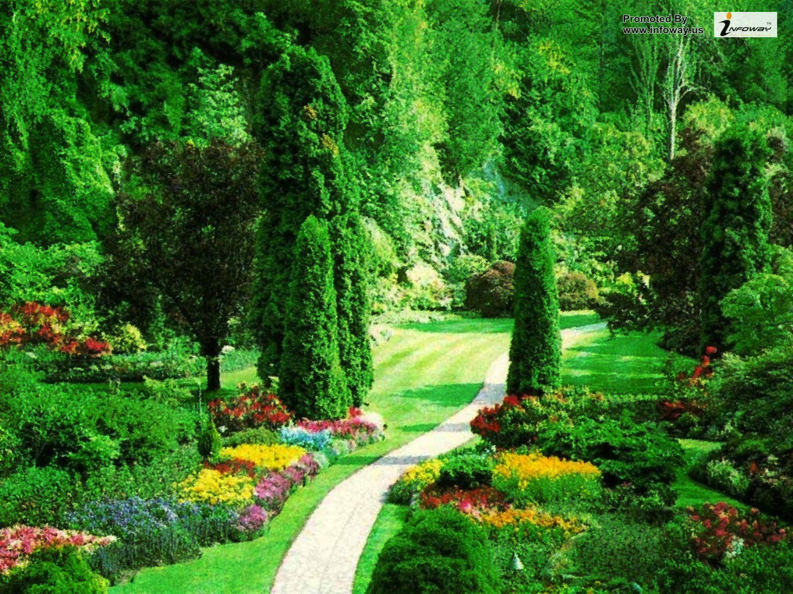 Beautiful Nature Scenery Wallpaper - WallpaperSafari