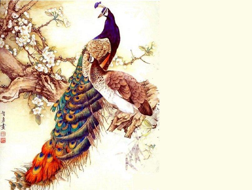 Birds on a Branch wallpaper   ForWallpapercom 805x606