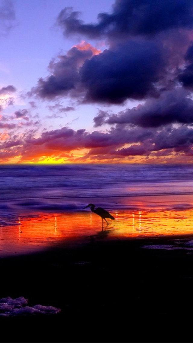 Ocean Beach Sunset HD Wallpapers for iPhone 5   Part 2 iPhone 640x1136
