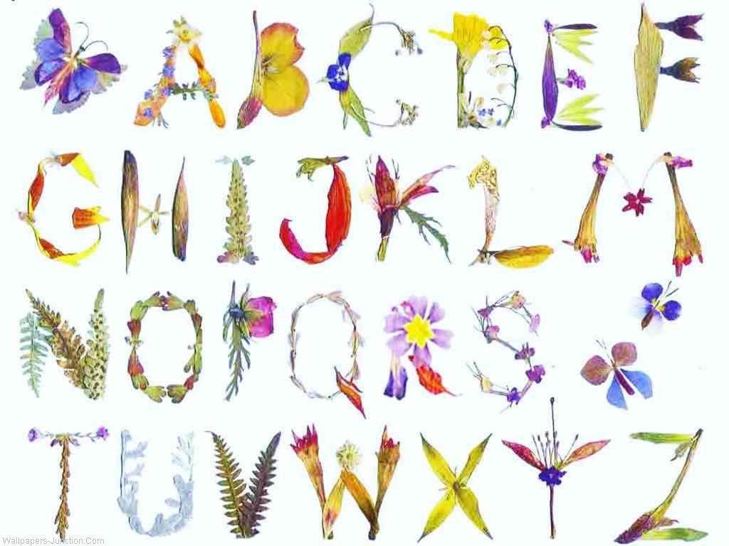 Alphabet Letters Wallpapers  WallpaperSafari