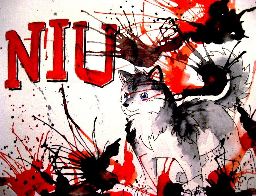 NIU Huskie Gift by Athena Unleashed 900x688