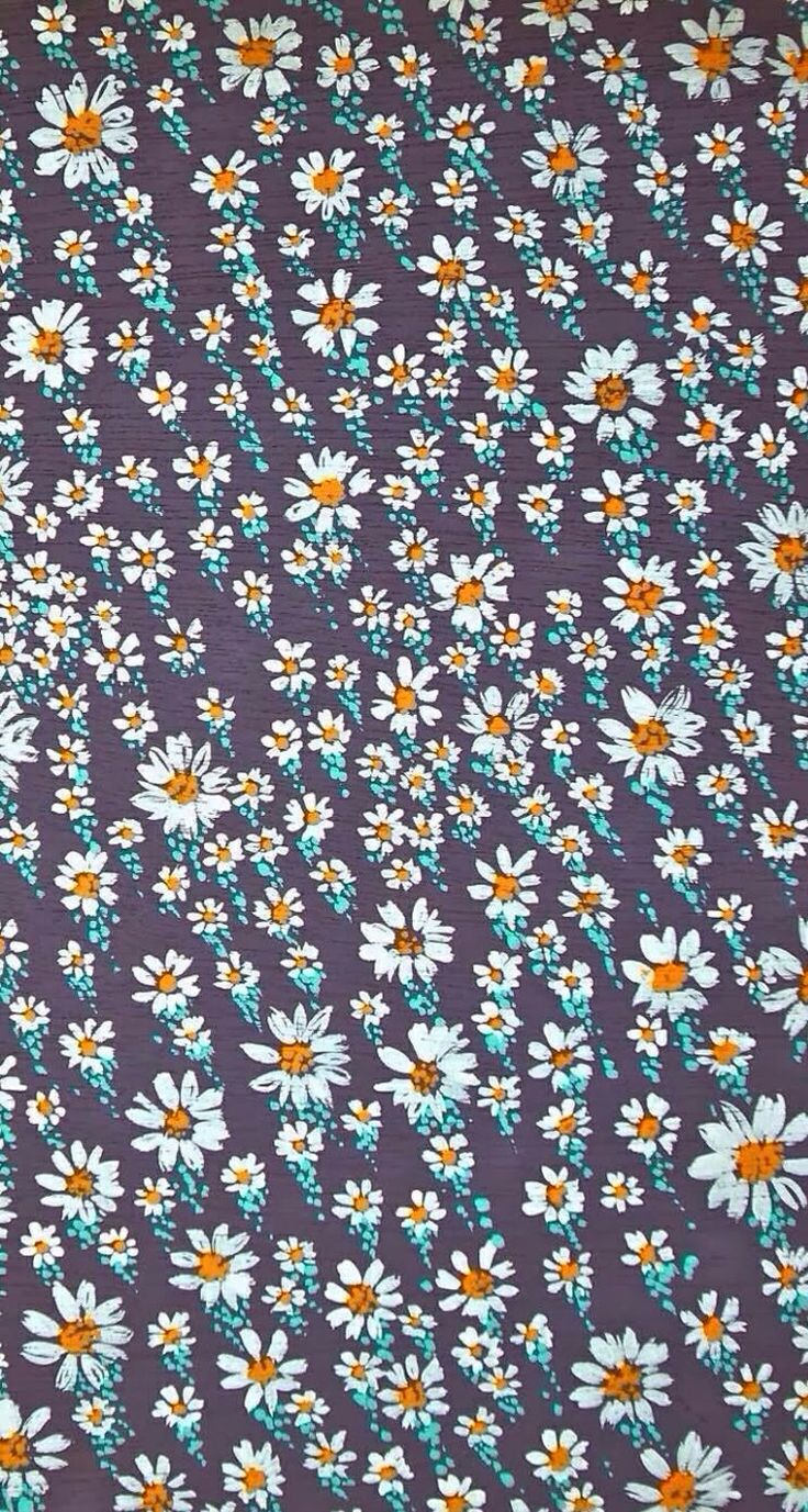 iPhone 5 wallpapers   Daisies For my phone Pinterest 736x1377
