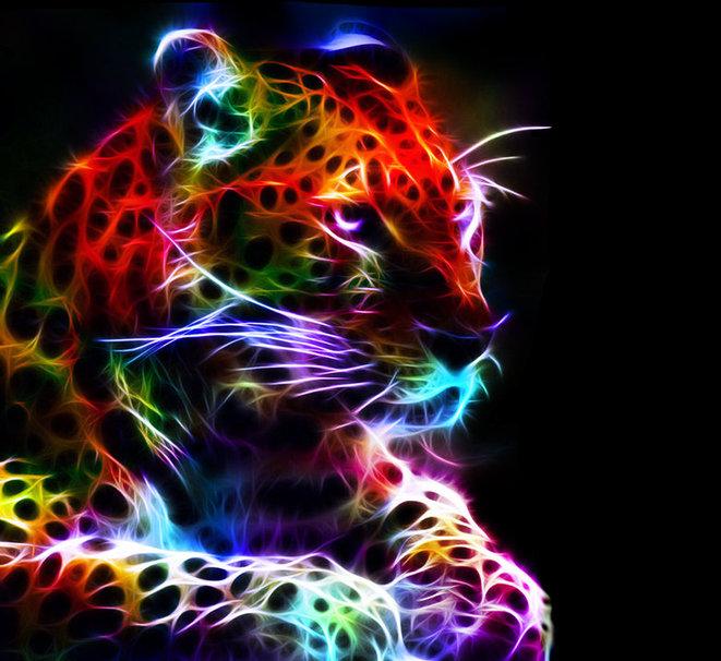 Colorful cheetah wallpapers wallpapersafari - Cool animal wallpaper light ...