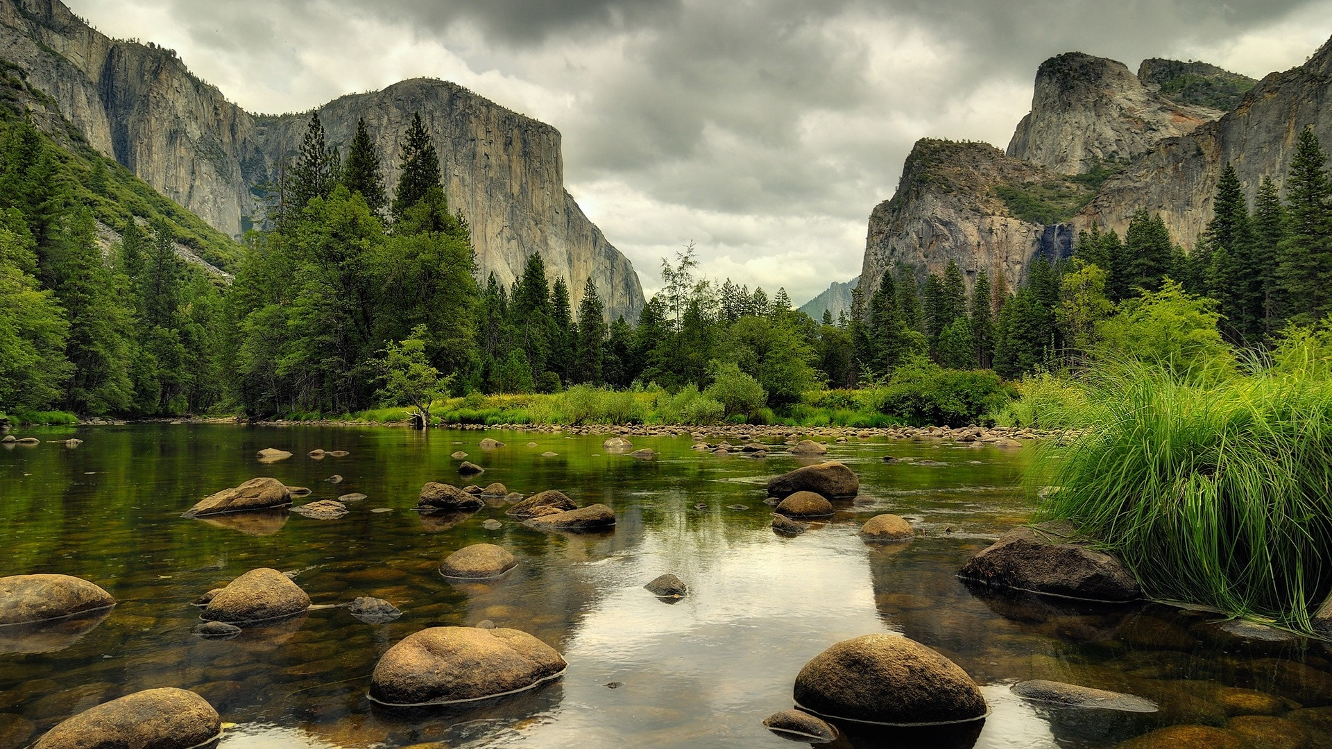 Free Download Forest Small River Desktop Wallpaper Hd
