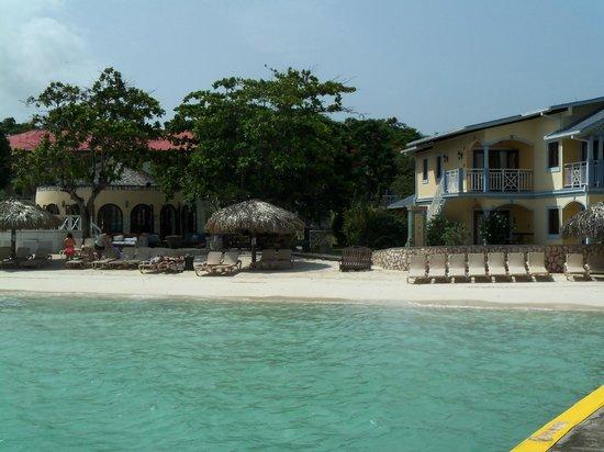 bar pool   Picture of Sandals Montego Bay Montego Bay   TripAdvisor 550x412