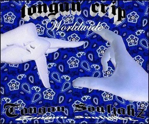 CUHZ Graphics Code TONGA CRIP GANG TS UPK CUHZ Comments Pictures 500x415
