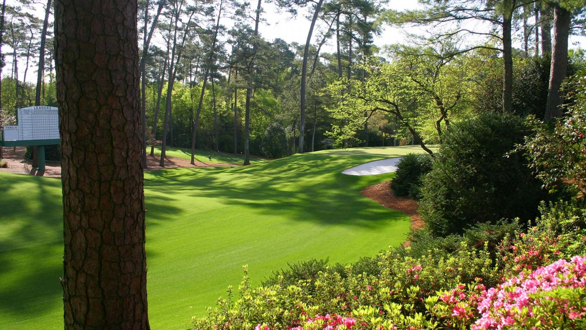 download The Augusta National Golf Course Wallpapers HD 1920x1080