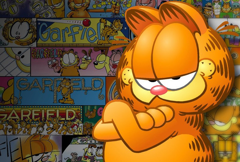 Dvd Garfield Movie Rip Download Softwares Lisisoft 800x540