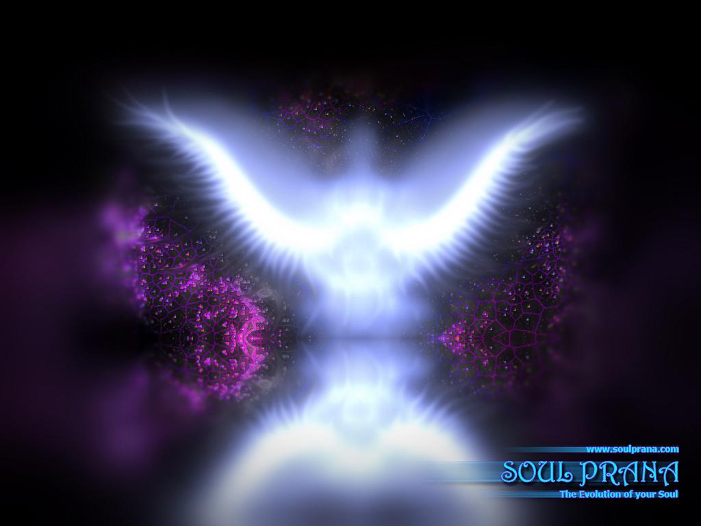 Angel Desktop Wallpapers Quotepaty 1024x768