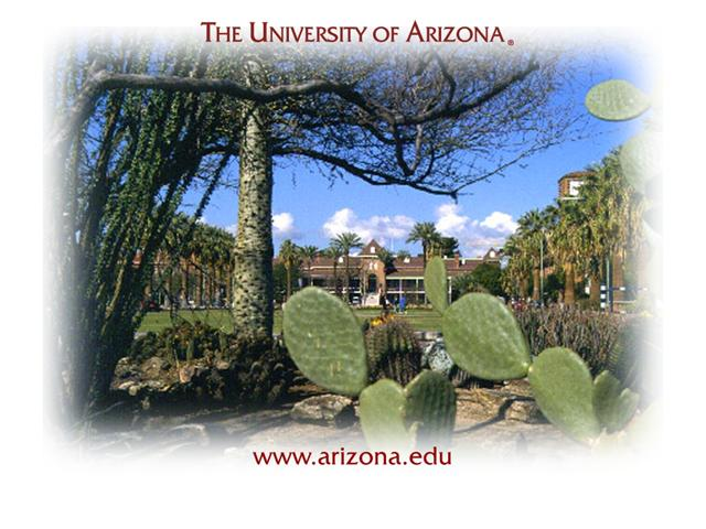 University of Arizona Joseph Wood Krutch Memorial Garden Wallpaper and 640x480