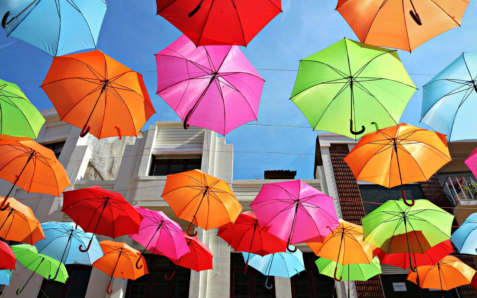 Tag Colorful Umbrellas Wallpapers Backgrounds Paos Images and 1600x1000