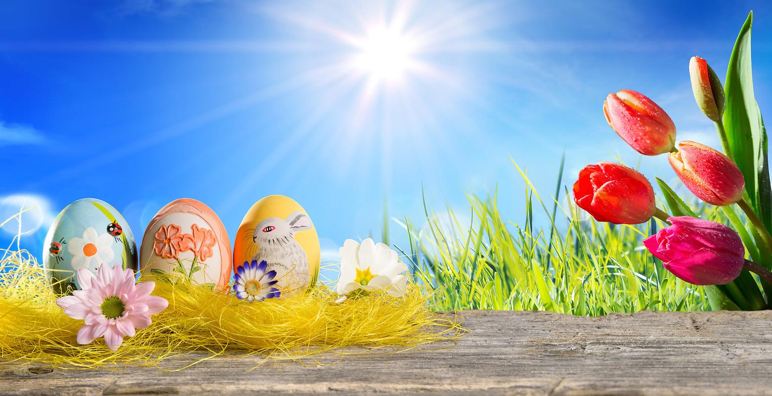 easter eggs HD Wallpaper 9504 1920x1080
