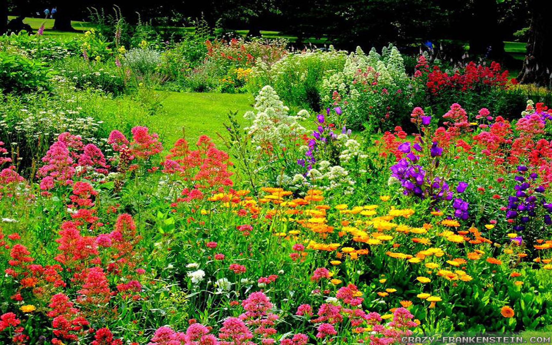 Beautiful flower garden wallpapers wallpapersafari for Flower landscape